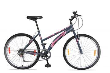 Imagen de Bicicleta Baccio Alpina Lady 24